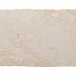Fossil Buff - Edging Natural Sandstone - Landscaping Features - Edging/Coping 450x160mm
